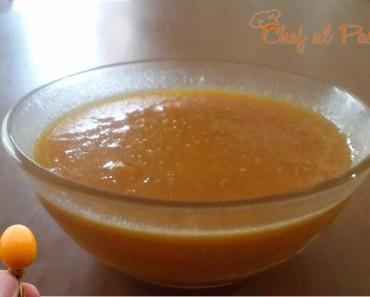 salsa de aguaymanto 5